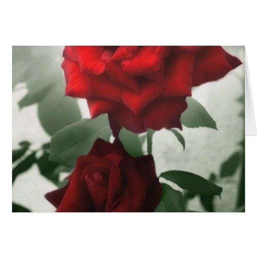 Rosas rojos románticos 1 felicitacion