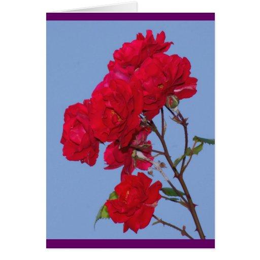 Rosas rojos tarjeta de felicitación