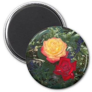Rosas rojos y anaranjados iman de nevera