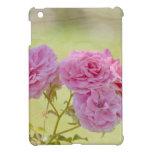 Rosas románticos del jardín iPad mini fundas