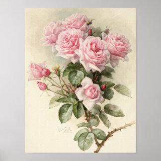 Rosas románticos del Victorian del vintage Poster