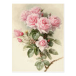 Rosas románticos del Victorian del vintage Postal
