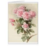 Rosas románticos del Victorian del vintage Tarjetas