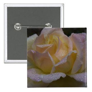 Rosas Rosa sombra oscura Pin