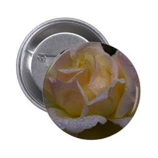 Rosas Rosa sombra oscura Pins