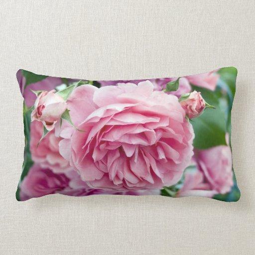 Rosas rosados almohadas