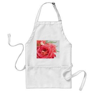 Rosas rosados aterciopelados delantal