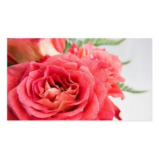 Rosas rosados aterciopelados plantillas de tarjetas personales