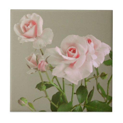 Rosas rosados teja  ceramica
