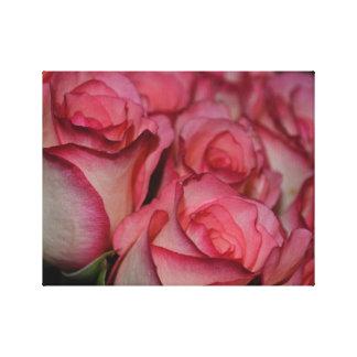 Rosas rosados blancos del borde impresión en lienzo estirada