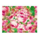 Rosas rosados bonitos tarjetas postales