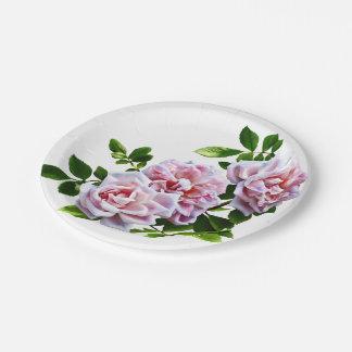 Rosas rosados de PsThree con las hojas Platos De Papel