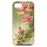 Rosas rosados del jardín del vintage para el el dí iPhone 5 protectores