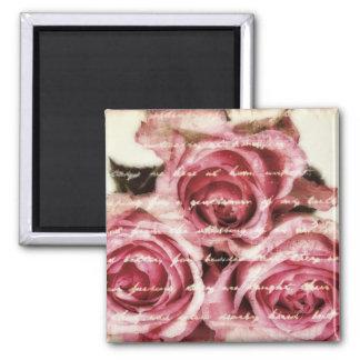 Rosas rosados del vintage imán cuadrado