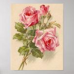 Rosas rosados del vintage impresiones