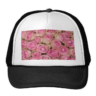 Rosas rosados el chispear por TheRoseGarden Gorra
