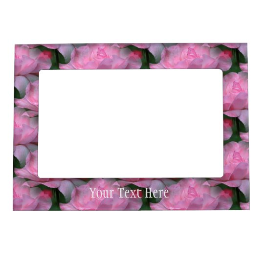 Rosas rosados en marco magnético de la flor de la  marcos magneticos