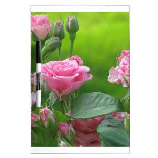 Rosas rosados florecientes pizarras blancas