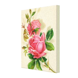rosas rosados, flores lona envuelta para galerias