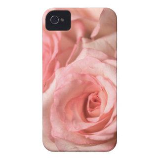 Rosas rosados iPhone 4 funda