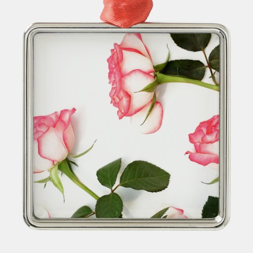 Rosas rosados hermosos adorno cuadrado plateado