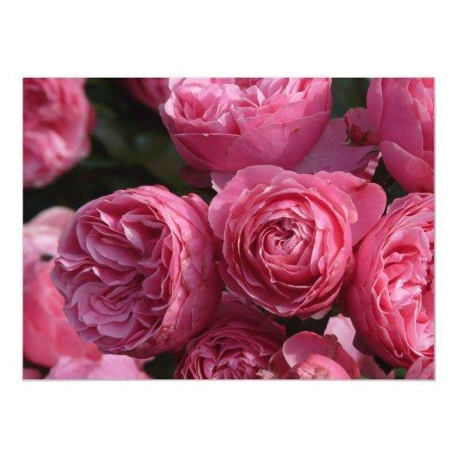 """Rosas rosados imponentes invitación 5.5"""" x 7.5"""""""
