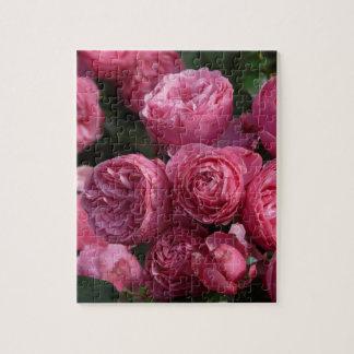 Rosas rosados imponentes puzzle