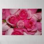 Rosas rosados - impresión de la lona impresiones