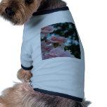 Rosas rosados ropa de perros