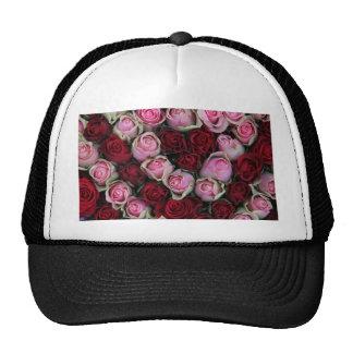 rosas rosados y rojos por Therosegarden Gorras De Camionero