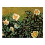 Rosas salvajes de Van Gogh (F597) Postales