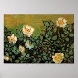 Rosas salvajes de Van Gogh (F597) Posters
