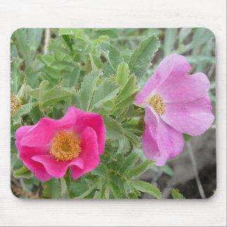 Rosas salvajes F0004 Alfombrillas De Raton