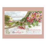 Rosas salvajes y cumpleaños del vintage de la ilus tarjetas postales