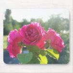 rosas tapetes de ratón