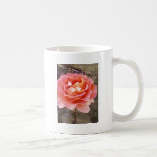 rosas taza