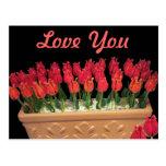 Rosas venecianos del vidrio de Murano Postal