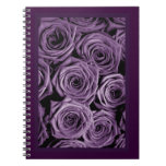 Rosas violetas libretas
