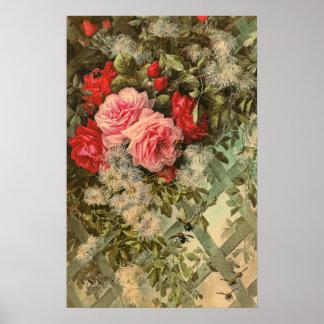 Rosas y Clematis en un poster del enrejado Póster