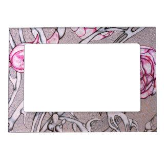 Rosas y espinas rosados marcos magnéticos de fotos