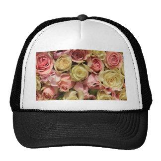 Rosas y lathyrus por la rosaleda gorros