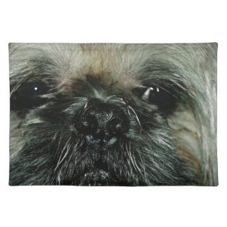 Roscoe Cloth Placemat