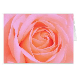Rose 013R Pink Card