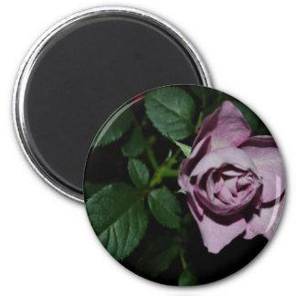 Rose-03 Fridge Magnet
