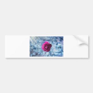 rose-1015-eop bumper sticker