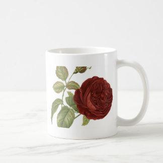 rose-1077964.jpg taza