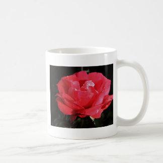 rose-1142965.jpg taza