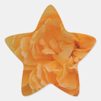 ROSE 11 STAR STICKER
