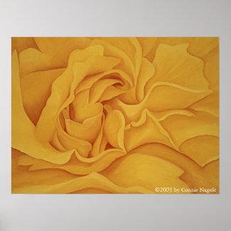 Rose #15 Poster