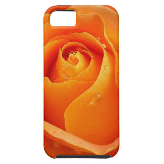 Rose 1 Speck Cases iPhone 5 Cases